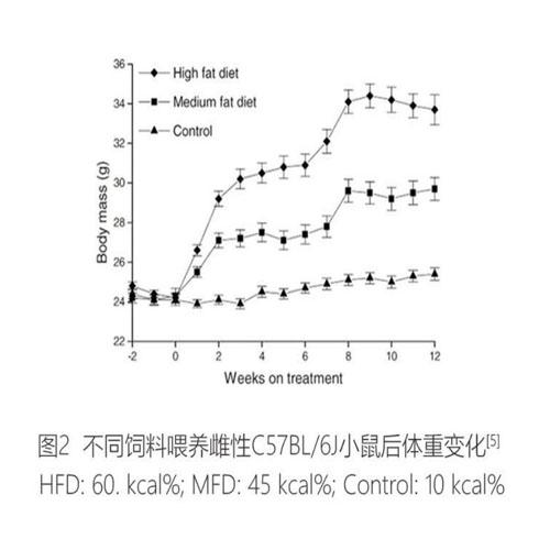 造模肥胖型饲料(图2)