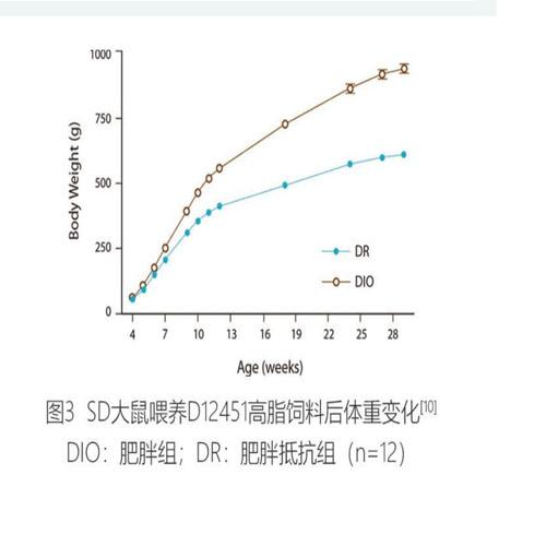 造模肥胖型饲料(图3)